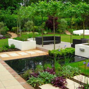Photo of a large contemporary back formal full sun garden in Surrey with concrete paving.