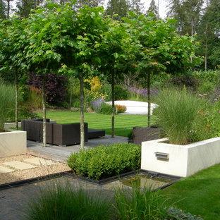 Großer, Geometrischer Moderner Garten hinter dem Haus mit direkter Sonneneinstrahlung und Betonplatten in Surrey