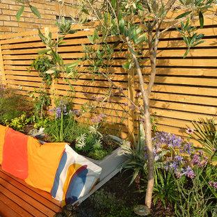 Inspiration pour un jardin méditerranéen.