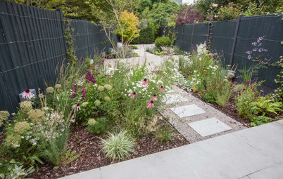 Garden Tour: A Bare, Narrow Patch Transformed for Tranquillity