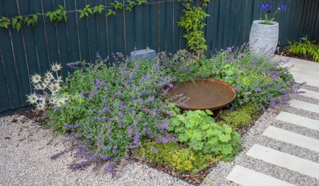 The Contemplative Garden: A Place for Quiet Reflection