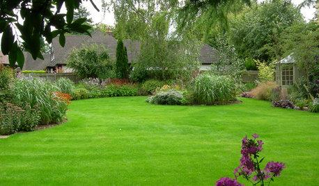 6 ventajas y 6 inconvenientes de plantar césped en el jardín