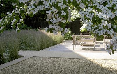 Garten neu gestalten – mit diesen 5 Schritten
