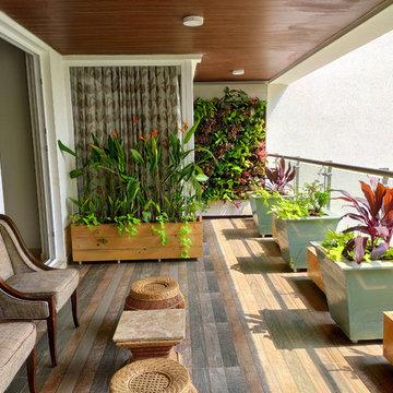 Todi's Balcony Garden