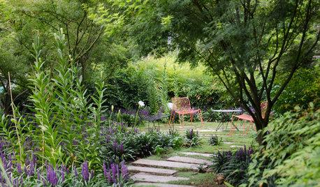 8 Best Shade-Loving Plants for Gardens That Get Less Sunshine