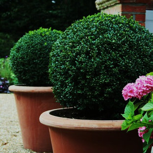 Topiary & Clipped Planting In the Garden