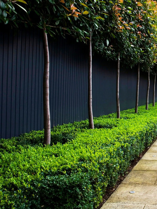 Black Garden Wall Ideas Pictures Remodel and Decor