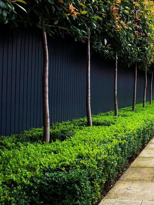 Black Garden Wall Houzz