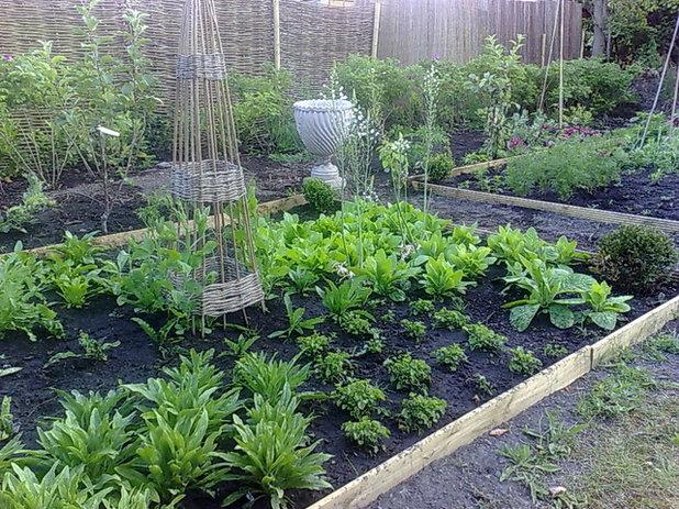 Traditional Garden Traditional Garden