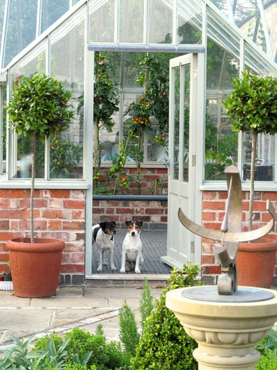 Traditional Garden by Sue Hayward Garden Design Ltd