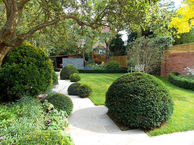 Transitional Landscape Transitional Garden