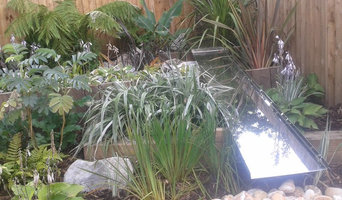 Tropical garden and water feature