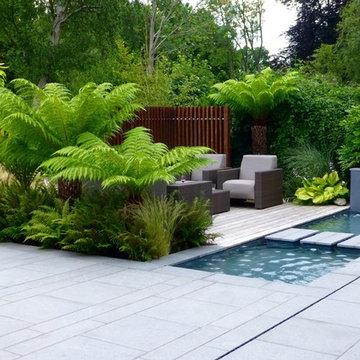 Tropical Garden in Northwood