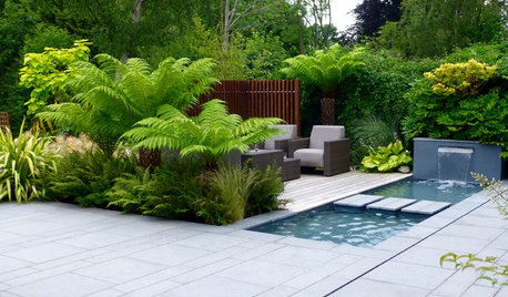10 Tips for Creating a Tropical Garden in a UK Climate