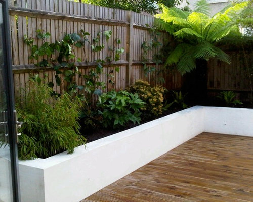Small courtyard garden design ideas renovations photos for Courtyard landscaping brisbane