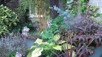 Tropical pub garden