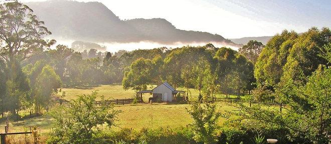 Traditional Landscape by Brigit Earl Landscape Design