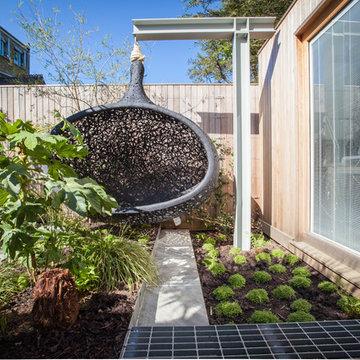 Urban jungle pocket garden