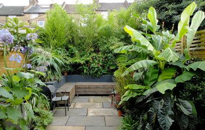 До и после: 5 вариантов переделки сада и участка
