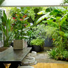 5 of the Best Before and After Garden Transformations on Houzz