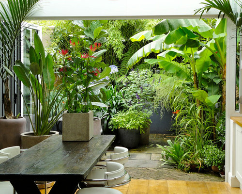 Top 30 Tropical Landscaping Ideas Remodeling Photos Houzz