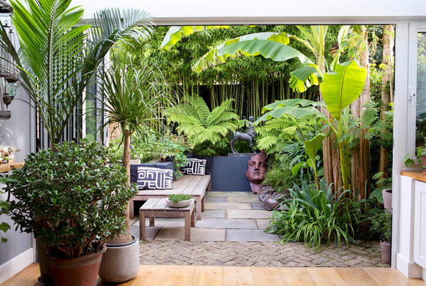 Contemporary Garden by antonia schofield garden design