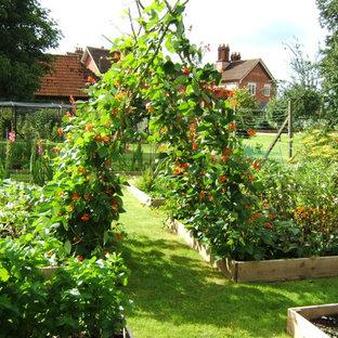 На фото: большие солнечные огороды на участке в классическом стиле с освещенностью