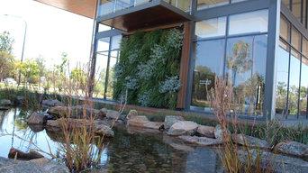 Vertical Gardens Green Walls Perth Frasers Landing