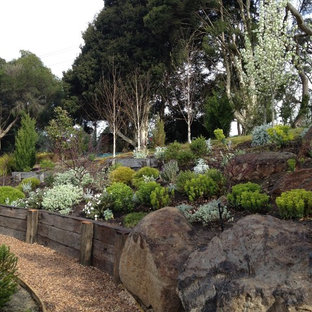 Design ideas for a contemporary hillside gravel landscaping in Melbourne.