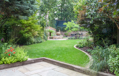 Garden Tour: Two Gardens Become One Seamless, Leafy Space