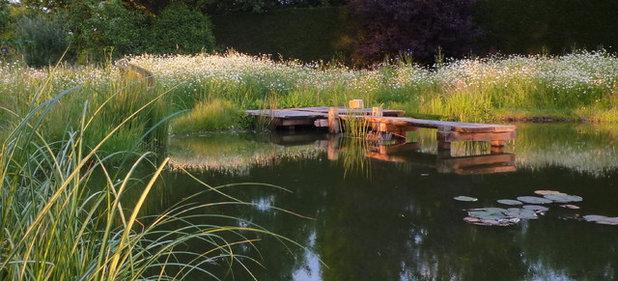 Traditional Landscape by Claudia De Yong Garden Design