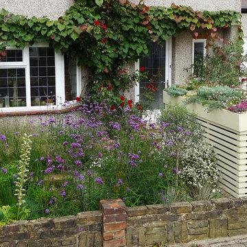 Wildlife Friendly Front Garden