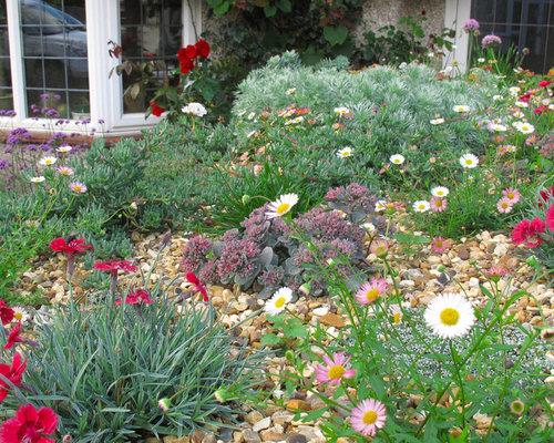 Jardin bord de mer budget mod r photos et id es d co for Decoration jardin bord de mer