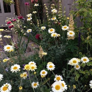 Wimbledon, courtyard garden