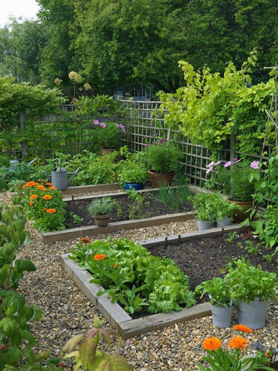 country garden by joanne winn garden design