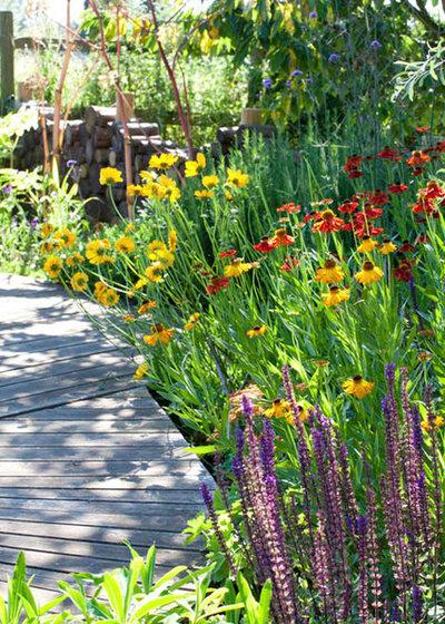Traditional Garden by Joanne Winn Garden Design