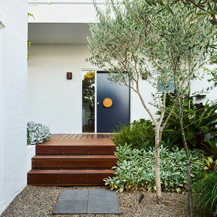 Design ideas for a mid-sized contemporary courtyard formal garden in Sydney.