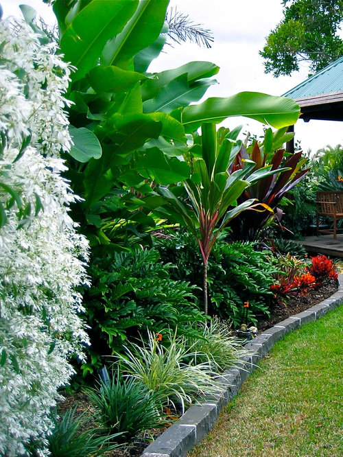 Tropical full sun landscape design ideas remodels photos for Queensland garden design