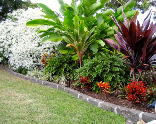 Tropical Full Sun Garden Design Ideas Renovations Photos