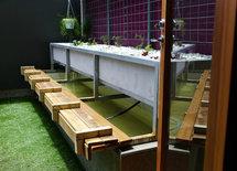 Brilliant aquaponics setup.