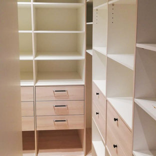 Diseño de armario y vestidor nórdico grande