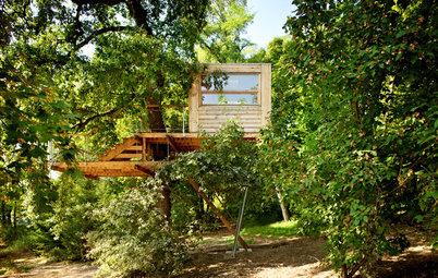 Ein Baumhaus bauen: Darauf achten die Profis