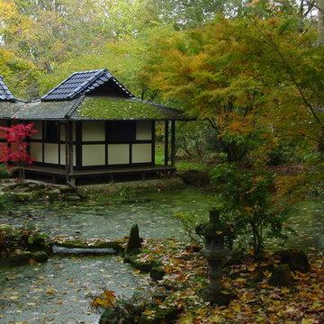 Herbst im Zenkloster Liebenau
