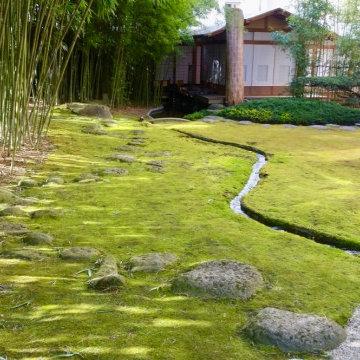 Japanischer Moosgarten
