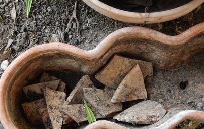 Le 9 Parole del Giardinaggio che Devi Conoscere