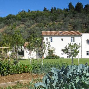 Esempio di un grande giardino country esposto in pieno sole dietro casa in estate