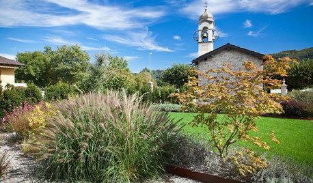 Tutto sul Prato: Progetto, Posa e Manutenzione