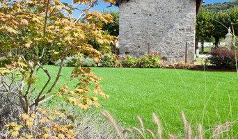 Graminacee, lavanda e Acer japonicum 'Aconitifolium'