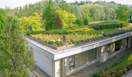 L'Idea del Mese: il Tetto Giardino (con Tanto di Sentiero)