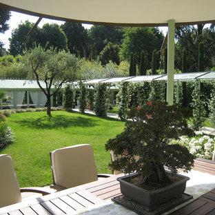Jardin moderne Milan : Photos et idées déco de jardins